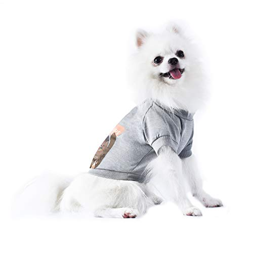 Star Wars Come To The Fluffy Side Chewbacca Dog Tee   Star Wars Dog Shirt for Small Dogs   Small
