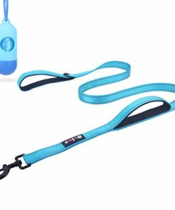Bolux 5ft Dog Leash, Heavy Duty Rope Leash with 2 Padded Handle – Pet Training Lead with 3M Reflective Double Handle for Traffic Control Safety, Perfect for Large Medium or Small Dog (Turquoise)