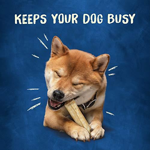 Purina Busy Roll Hide Dog Treats, Small/Medium, 9 Treats