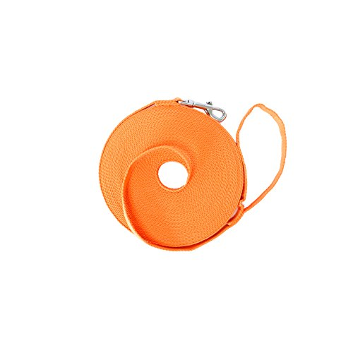 Dog/Puppy Obedience Long Recall Training Agility Lead Leash – Perfect for Pet Behavior Training, Multiple Sizes (30 ft, Orange)