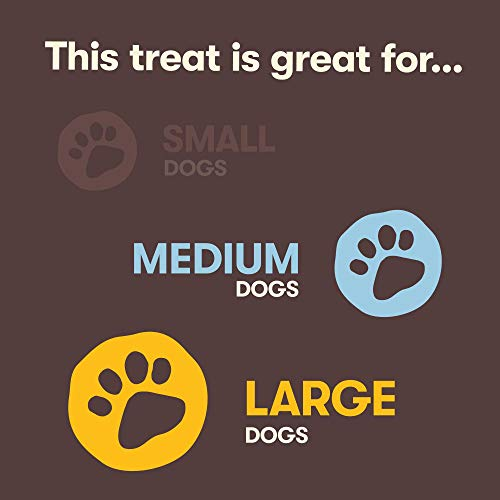 Pet 'n Shape Beef Bone Treat – Made & Sourced in The USA – All Natural Dog Chewz, Large, 2 Count