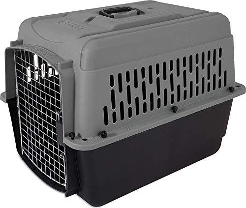 Aspen Pet Porter Heavy-Duty Pet Carrier with Secure Lock, 9 Sizes, 13 Colors