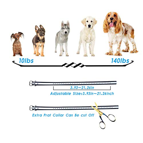 Wireless Dog Fence Training Collar 2 in 1 System, Safe Effective Dog Fence Adjustable Remote E-Collar, Rechargeable Waterproof Beep/Vibrate/Shock Collar (Wireless Dog Fence + Dog Training System)