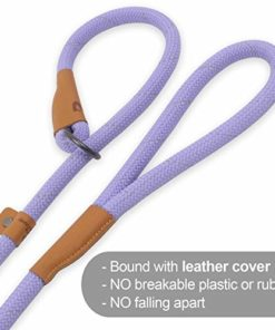 Pet's Company Slip Lead Dog Leash, Reflective Mountain Climbing Rope Leash, Dog Training Leash – 5FT, 2 Sizes (Medium, Lavender)