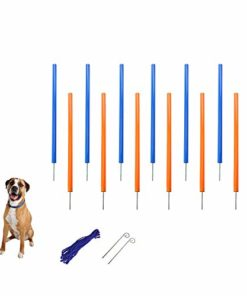 MiMu Dog Agility Equipment – Agility Set Dog Weaving Poles Dog Obstacle Course, Dog Agility Training Equipment