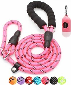 BAAPET 6 Feet Slip Lead Dog Training Leash for Large, Medium, Small Dogs (Pink)