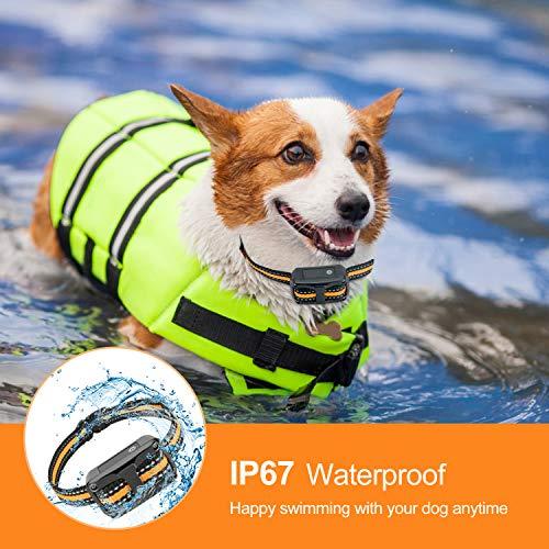 NinjaDog Anti Bark Collar 2020 Rechargeable & Waterproof Dog Bark Collar with Beep Vibration and Harmless Shock, 5 Sensitivity – Stop Barking Training Collars for Small Medium Large Dogs