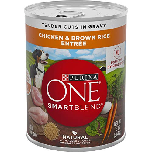 Purina ONE Natural, High Protein Gravy Wet Dog Food, SmartBlend Tender Cuts Chicken & Brown Rice – (12) 13 oz. Cans
