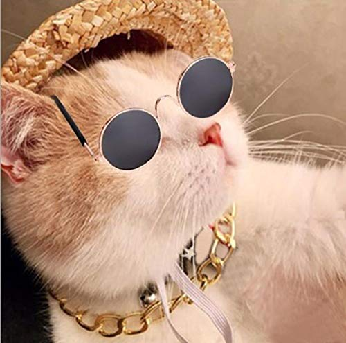 WODISON Cool Pet Dog Cat Costume Sunglasses and Gold Chain Collar Hat Set of 3