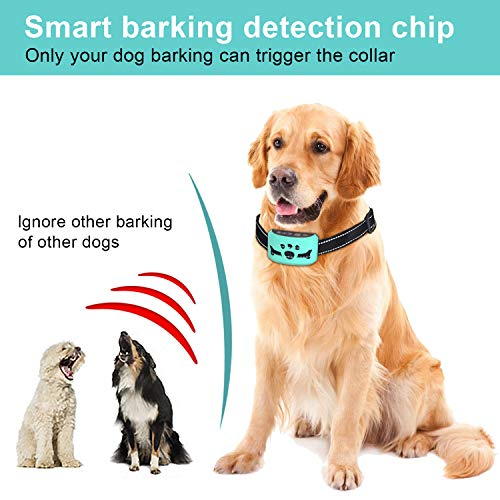Dog Bark Collar [ 2020 New,7 Adjustable Sensitivity and Intensity Levels – Triple Anti-Barking Modes-Rechargeable – Rainproof No Barking Control Dog Collar for Small, Medium, Large Dogs