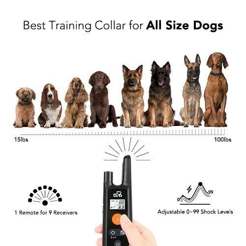 Dog Training Collar – Rechargeable Dog Shock Collar w/3 Training Modes, Beep, Vibration and Shock, 100% Waterproof Training Collar, Up to 1000Ft Remote Range, 0~99 Shock Levels Dog Training Set