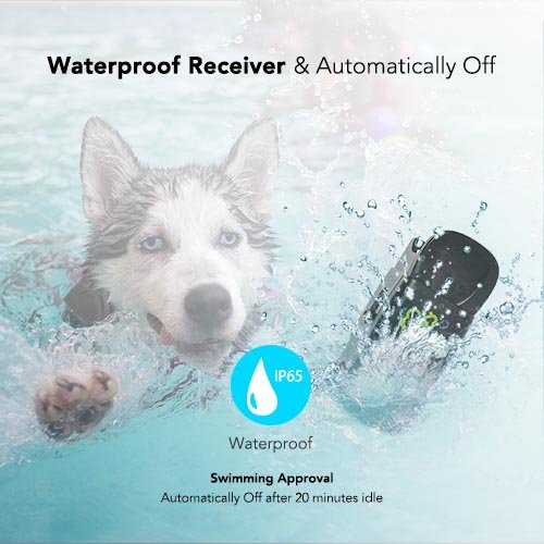DOG CARE Dog Training Collar – Dog Shock Collar w/3 Training Modes, Beep, Vibration and Shock, 100% Waterproof Training Collar, Up to 1000Ft Remote Range, 0-99 Shock Levels Dog Training Set