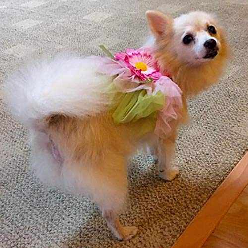 Petea Daisy Flower Gauze Tutu Dog Dress Vest Apparel Skirt Clothes Pet Puppy Bowknot Princess Clothes for Dogs and Cats (M)