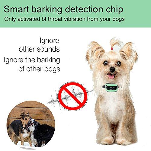 MASBRILL Dog Bark Collar Safe No Bark Control Device for Tiny Small Medium Dog Stop Barking by Sound and Vibration No Shock Human Way for Dog Lovers