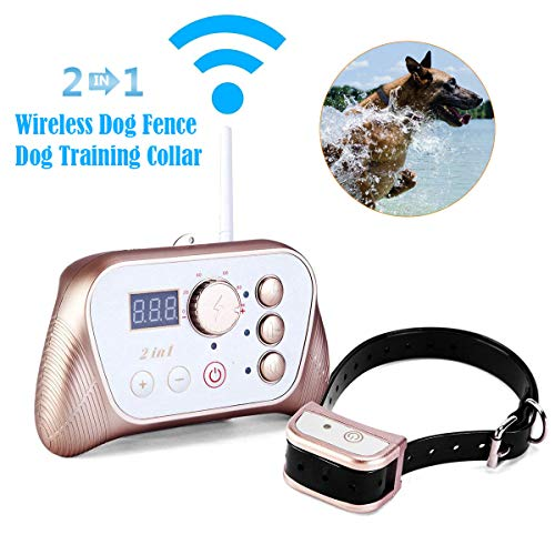 Wireless Dog Fence Training Dog Collar 2-in-1 System, Stablest Signal Electric Wireless Pet Fence, Beep/Vibrate/Static Shock Remote Collar, Rechargeable Waterproof Collar (Golden, 2-In-1 System)