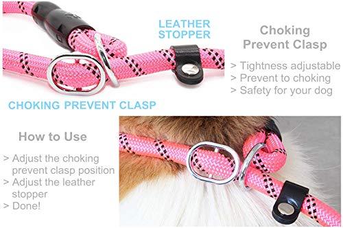 BAAPET 6 Feet Slip Lead Dog Training Leash for Large, Medium, Small Dogs (Pink)
