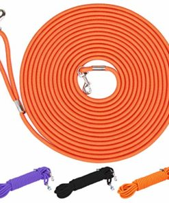 Hi Kiss Check Cord Large,Medium Small Dogs/Puppy Obedience Recall Training Agility Lead – 15ft 30ft 50ft Training Leash – Great for Training, Play, Camping, or Backyard Orange 50 Feet