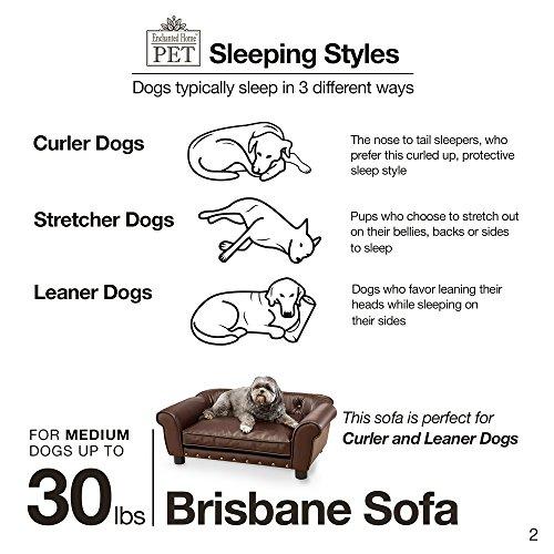 Enchanted Home Pet Brisbane Tufted Pet Bed