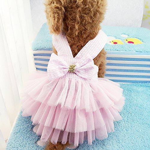 Celestte Pet Dog Dress,2016 Striped Mesh Puppy Dog's Princess Dresses (S, Pink)