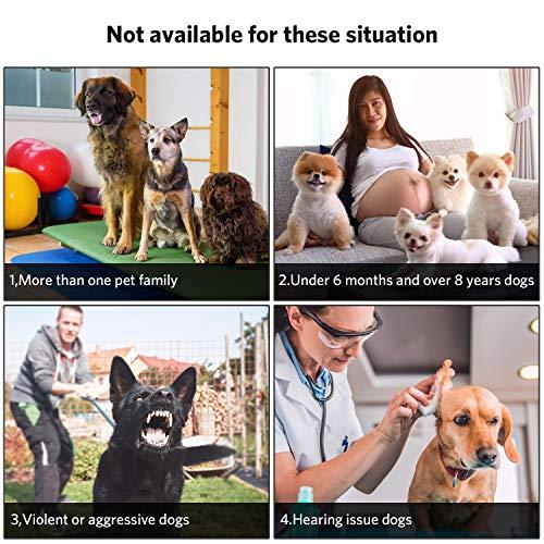 Anti Barking Device, Ultrasonic Dog Bark Deterrent ZINMOND, 2020 Bark Control Device with 3 Adjustable Ultrasonic Volume Levels, Automatic Dog Barking Control Devices for Small Medium Large Dog