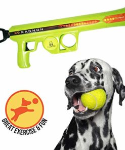 Hyper Pet K9 Kannon K2 Dog Ball Launcher Interactive Dog Toys (Load & Launch Tennis Balls for Dogs to Fetch) [Best Dog Ball Launcher Toys for Large, Medium & Small Dogs], Full Size, Model: 50252EA