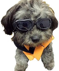 Dog Goggles – Small Dog Sunglasses Waterproof Windproof UV Protection For Doggy Puppy Cat – Black