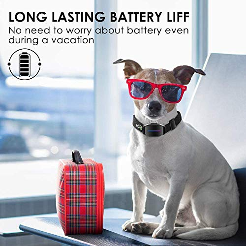 DOG CARE Dog Bark Collar – Effective Bark Collar for Dogs Sound Vibration & Automatic 7 Levels Shock Modes Training Collar w/LED Indicator Easy to Use Dog Shock Collars