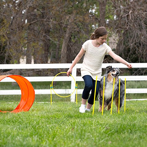 Outward Hound ZipZoom Outdoor Dog Agility Training for Dogs