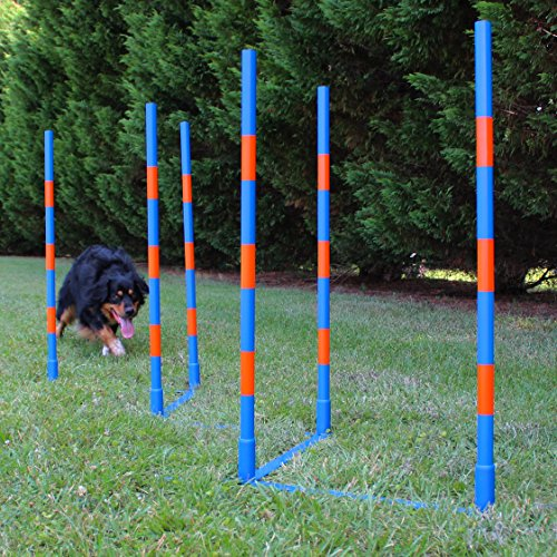 Lord Anson Dog Agility Weave Poles – Competition Grade Adjustable Agility Weave Pole Set – Dog Agility Equipment Set – 6 Weave Pole Set w/Carrying Case