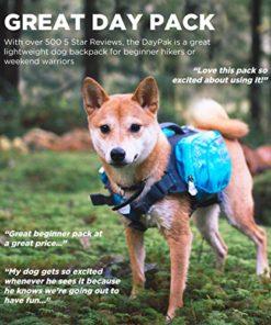 Outward Hound Daypak Dog Backpack Hiking Gear for Dogs, Medium, Blue