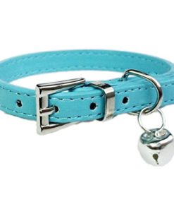 IEason Pet Collar, Hot Cute Bell Bell Collar Small Dog Collar Cat Collars Necklace (Same Size, Blue)