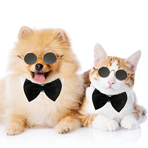 Frienda 6 Pieces Funny Cute Cat Small Dog Sunglasses Classic Retro Circular Metal Prince Sunglasses Eye-wear Protection Photos Props Accessories Cosplay Glasses (Black)