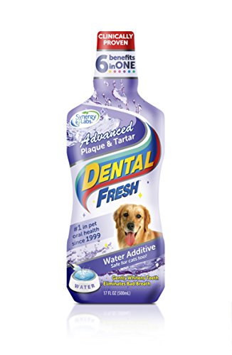Dental Fresh Water Additive – Advanced Plaque and Tartar Formula for Dogs – Clinically Proven, Add to Pet's Water Bowl to Whiten Teeth, Eliminate Bad Breath and Improve Oral Health (17oz)