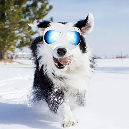 Namsan Dog Goggles – Large Breed Dog Sunglasses Windproof Snowproof Pet Goggles, Soft Frame, Elastic Adjustable Straps, White