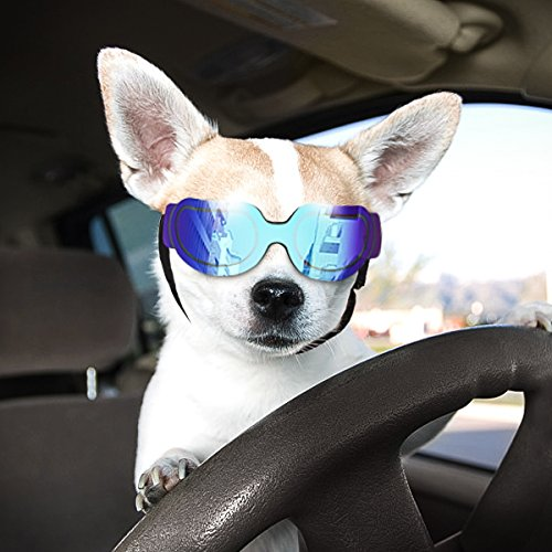 Namsan Stylish and Fun Pet/Dog Puppy UV Goggles Sunglasses Waterproof Protection Sun Glasses for Dog (Bright Blue)