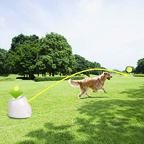 All for Paws Interactive Dog Automatic Ball Launcher for Large Dogs, 3 Tennis Balls Included, Max Version