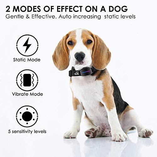 DOG CARE Dog Bark Collar – Effective Bark Collar for Dogs Sound Vibration & Automatic 7 Levels Shock Modes Training Collar w/LED Indicator Easy to Use Dog Shock Collars