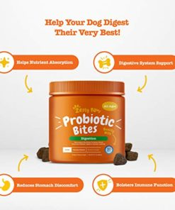 Probiotic for Dogs – with Natural Digestive Enzymes + Prebiotics & Pumpkin – for Diarrhea & Upset Stomach Relief + Gas & Constipation – Allergy & Immune + Hot Spots – Chicken Flavor – 90 Chew Treats