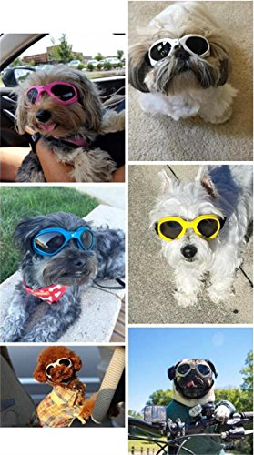 PetBoBo Pet Waterproof Windproof Anti-Fog Eye Protection Goggles, Stylish Pet Dog UV Goggles Sunglasses Waterproof Protection Sun Glasses for Dog Blue