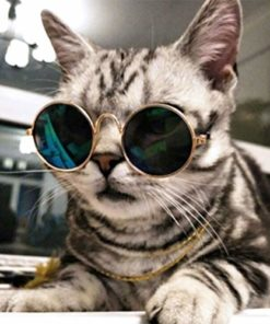 Cydnlive Cool Stylish and Funny Cute Pet Sunglasses Classic Retro Circular Metal Prince Sunglasses for Cat,Chihuahua or Small Dogs (Color May Vary)