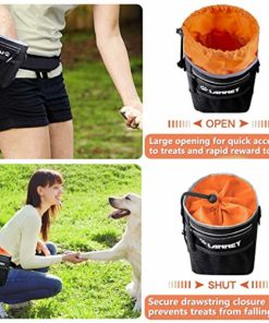Dog Treat Pouch Pet Training Bag for Small to Large Dogs, Treat Tote Carry Kibble Snacks Toys for Training Reward Walking, Metal Clip, Waist belt, Shoulder Strap, Poop Bag Dispenser, Black with Orange
