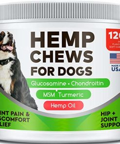 All-Natural Hemp Chews + Glucosamine for Dogs – Advanced Hip & Joint Supplement w/Hemp Oil Turmeric MSM Chondroitin + Hemp Protein to Improve Mobility – Joint Pain Relief Made in The USA – 120 Ct