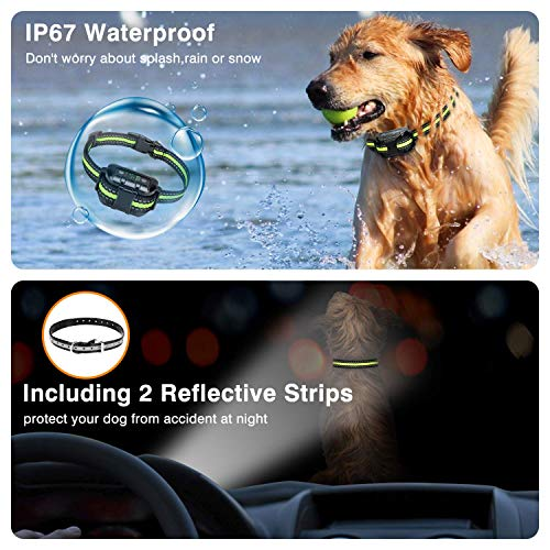 Flittor Bark Collar, No Bark Collar Rechargeable with Beep, Anti bark Collar with Adjustable Sensitivity and Intensity Beep Vibration No Harm Shock for Small Medium Large Dogs…