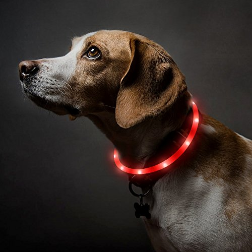 BSEEN Led Dog Collar USB Rechargeable Glowing Pet Safety Collars Water Resistant Light up Cut to resize to fit 11″-27″ for Small, Medium, Large Dogs (Red)