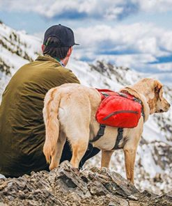 Kurgo Big Baxter Dog Backpack, Dog Saddlebag, Dog Pack, Adjustable Saddlebag for Hiking, Walking, Running, Camping, Coastal Blue, 50-110 lb (K01588)