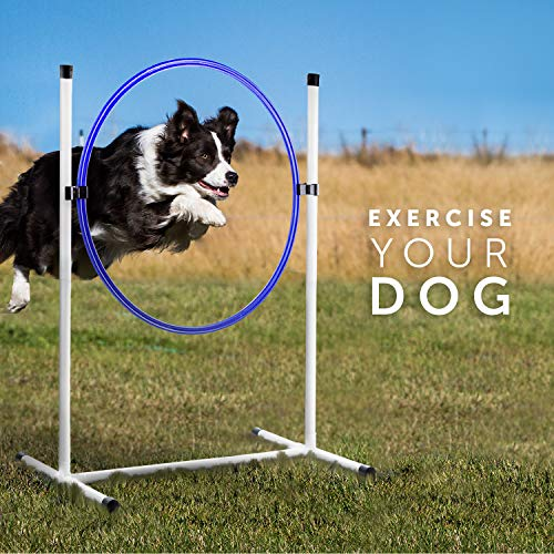 Better Sporting Dogs Complete Starter Agility Set for Dogs | 5 Piece Dog Agility Kit | Dog Tunnel | Agility Jump | Tire Jump | Weave Poles | Pause Box