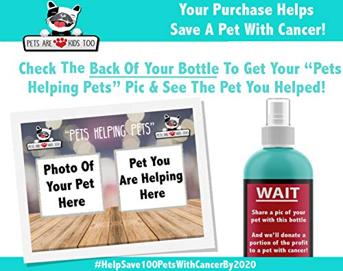 Pets Are Kids Too Premium Pet Dental Spray (Large – 8oz): Eliminate Bad Dog Breath & Bad Cat Breath! Naturally Fights Plaque, Tartar & Gum Disease Without Brushing! Add to Water! Digestive Aid!