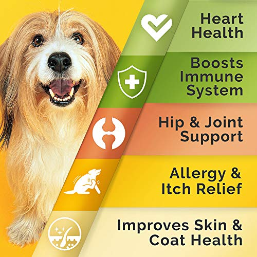 Pawfectchow Fish Oil Omega 3 for Dogs – Allergy Relief – Joint Health – Itch Relief, Shedding – Skin and Coat Supplement – Alaskan Salmon Oil Chews – Omega 3 6 9 – EPA & DHA Fatty Acids
