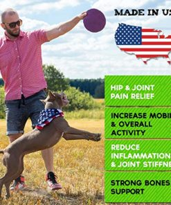 StrellaLab Hemp Treats + Glucosamine for Dogs – Hip & Joint Supplement –  w/Hemp Oil + Protein – Chondroitin, MSM, Turmeric to Improve Mobility &  Energy – Natural Joint Pain Relief, 120 Chews