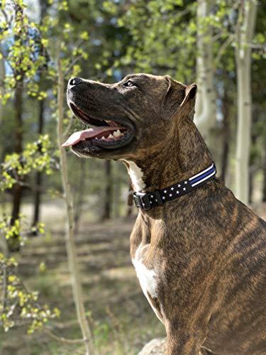 Native Pup Thin Blue Line Dog Collar- Stars (Medium)